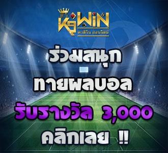 k9win banner euro 2020